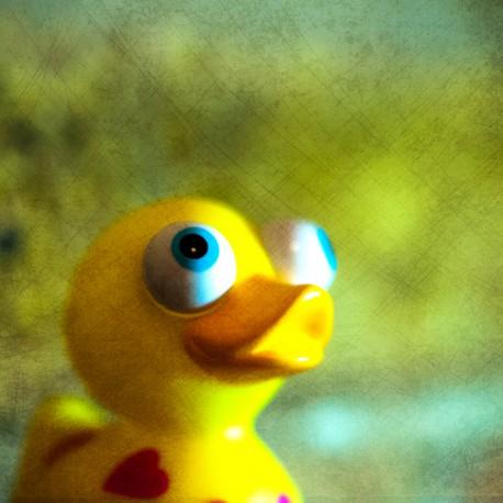 obsidianart - Happy duck on my desk